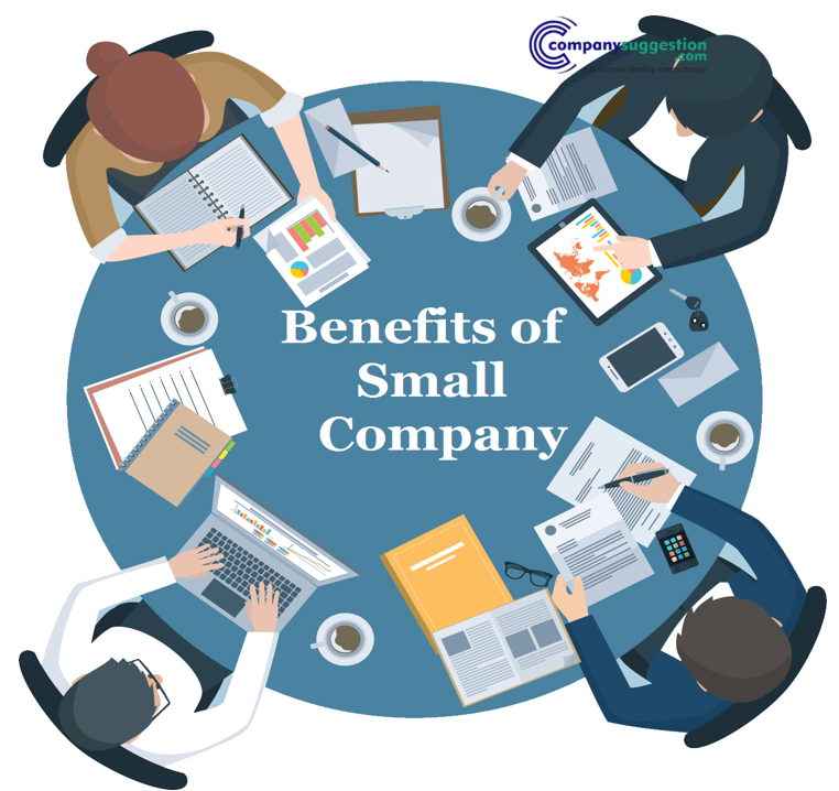 Benefits of Small Companies